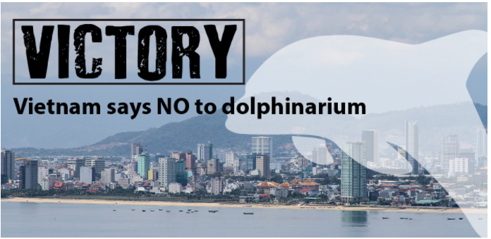 Vietnam's rejection of dolphin park shows no place for cruelty in entertainment