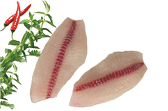 Tilapia fillet/portion